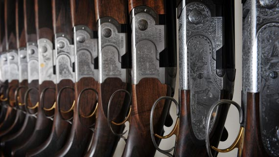 Row of Beretta shotguns